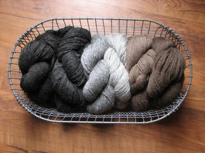 Icelandic Sheep Yarn