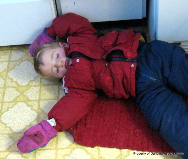 Teigen after a hard day sledding, asleep on the kitchen floor!