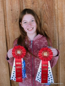 Victoria's two Reserve Champion Ribbons