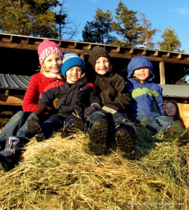 The kids playing on the hay bale...