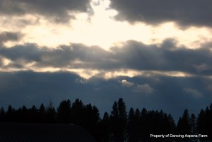 sunbeam in evening sky...
