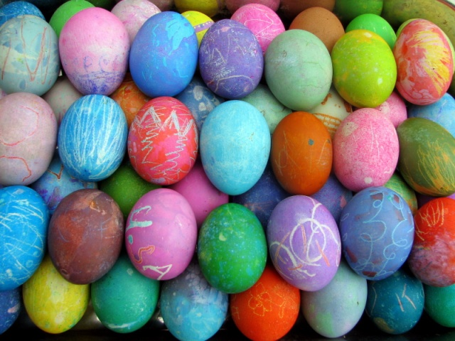 All the eggs brightly colored...