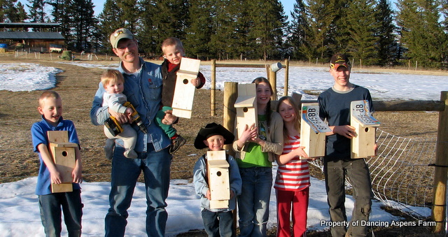 Everyone with their Bluebird houses...