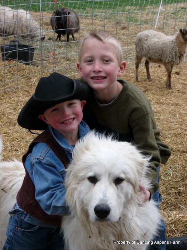 Dugur (Great Pyrenees) and Hayden and Garrett...