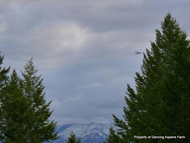 Still snow on the mountains...