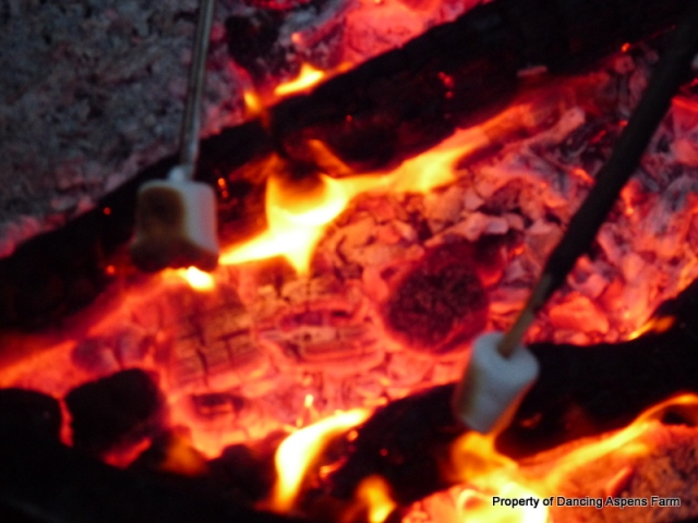 The making of Smores...