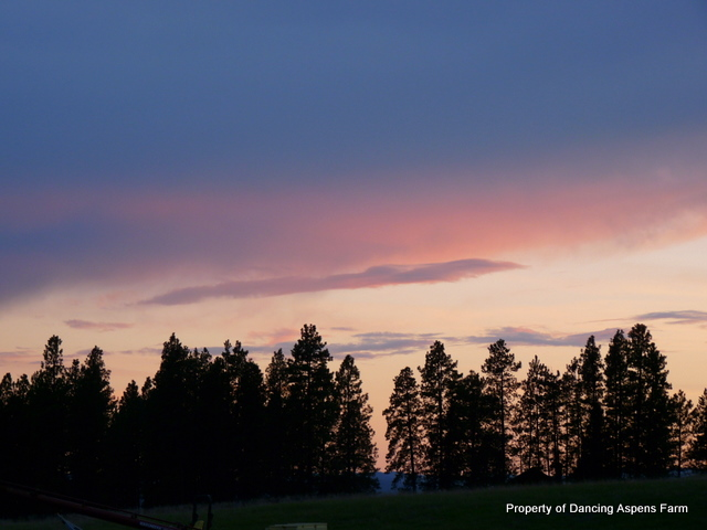 Another beautiful sunset...