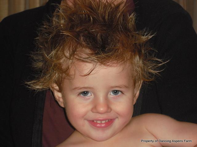 A Wild Hair...