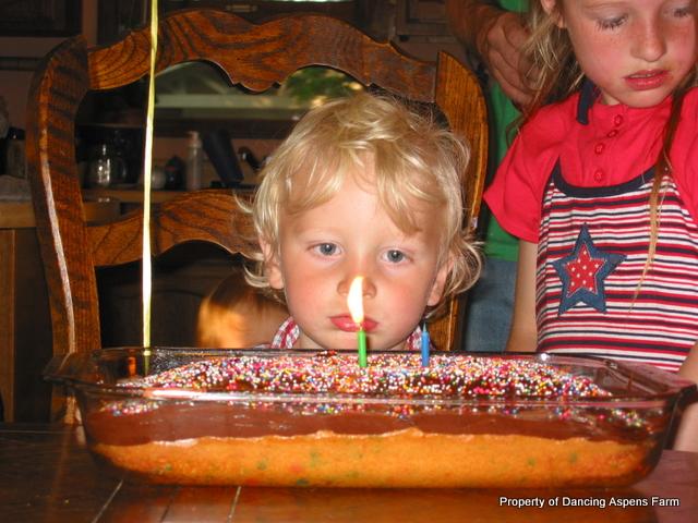 Garrett's 2nd Birthday...
