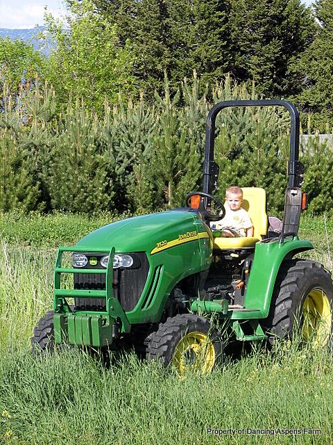 Teigen on daddy's tractor...