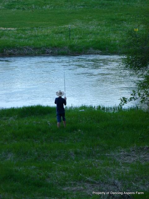 Gone Fishing...
