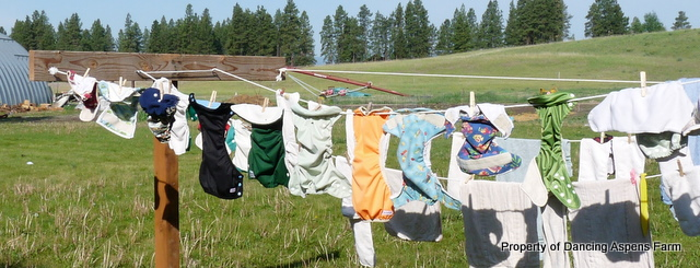 Cloth Diapers on the line...
