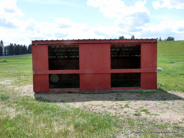 One of the Calf Sheds