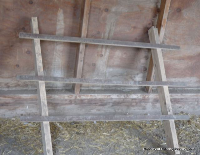 Inside, roosts and nesting boxes were added...