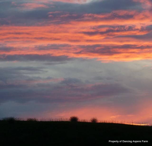 A Beautiful Montana Sunset...