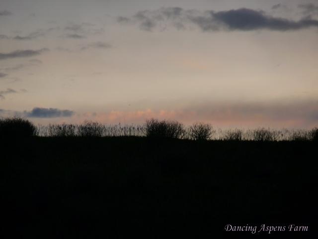 Last nights sunset...