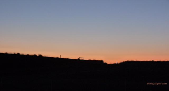 Sawyer's Sunset