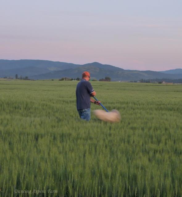 Mark sweeping fields...