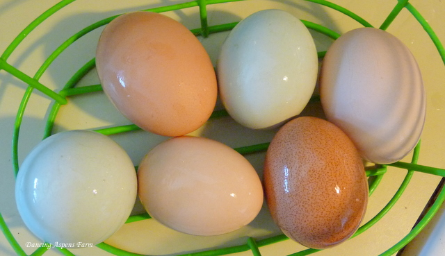 Add some homegrown eggs...