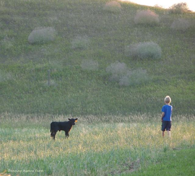 Garrett with the calf...