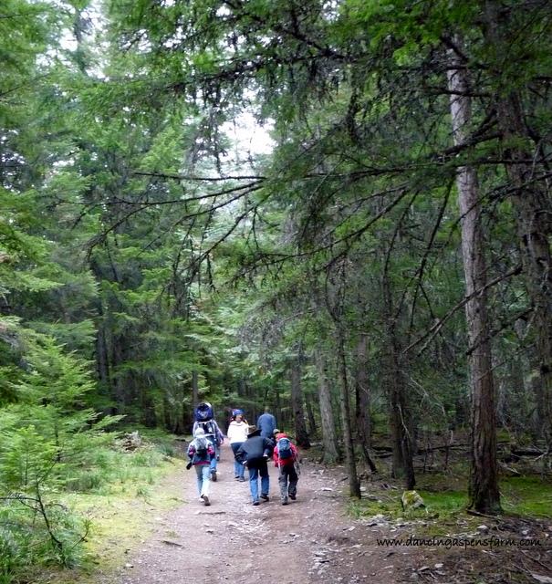 kids hiking...