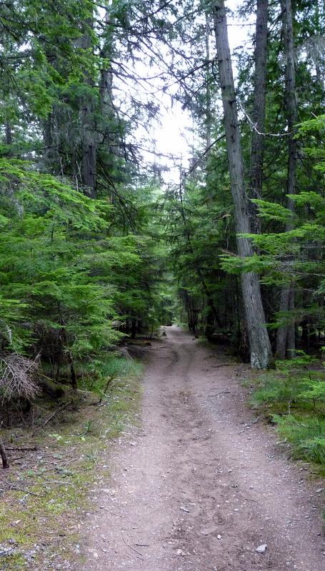 trail...
