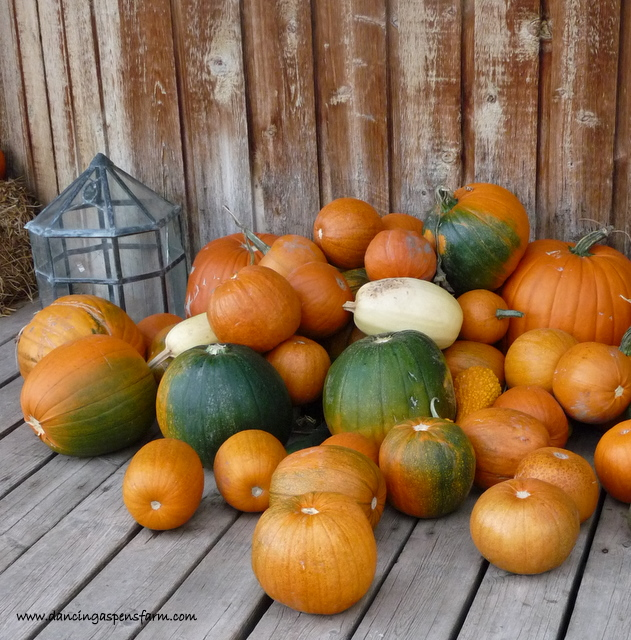 Pumpkins on the porch...